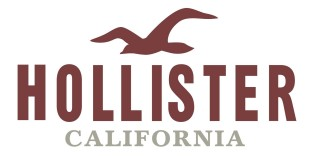 hollister-2013
