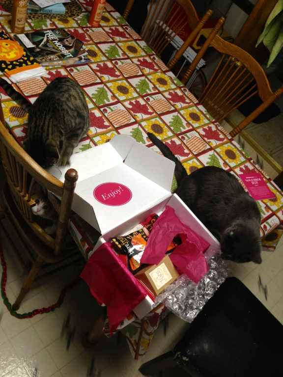 My cats even go crazy over the Popsugar Must Have Boxes!!!! Whenever I try to take pictures or open my boxes this is what I have to deal with... Notice Dexter creepin in...
